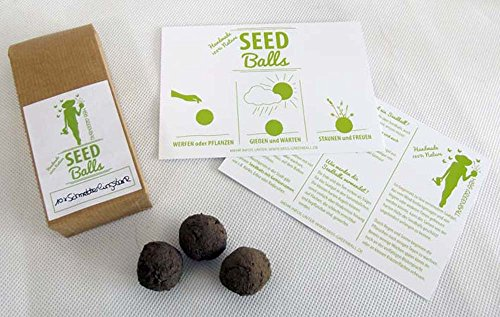 'Schmetterlingstanz' Seedballs - 10er Packung Seedbombs