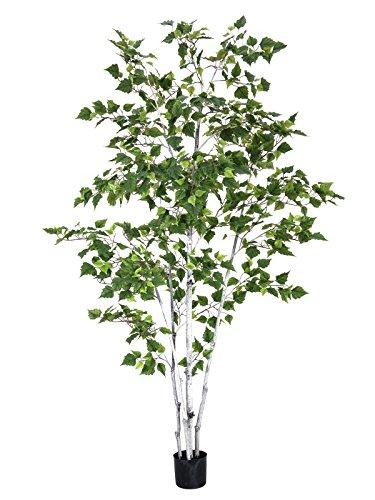 artplants – Künstliche Weißbirke mit 1100 Blättern, getopft, 210 cm – Deko Birken Baum/Kunstbaum