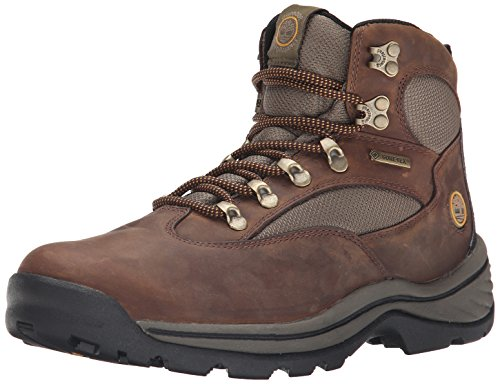 Timberland RG Hike FTP Chocorua Mid GTX Damen Kurzschaft Stiefel, (DARK BROWN/GREEN), 39 EU