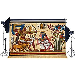 Sunny Star Vinyl 5X3FT Ancient Egyptian Backdrop Shabby Old Egypt Mural Painting Backdrops Hieroglyphics Go Hunting Historic Photography Background for Personal Portraits Photo Studio Props YX538