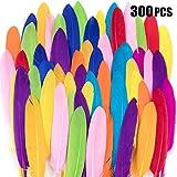 Vidillo Plumes Colorées, 300pcs Naturel Plume Décoration, Idéal Pour Costumes, Chapeaux, Décoration d'intérieur Fete Mariage Anniversaire, Multicolore (Tout droit)