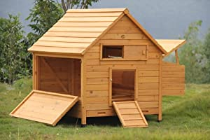 Large Cocoon Chicken Coop Hen House With 4 Nesting Areas Poultry Ark Nest Box - With Quad (4) Nest Box - Removeable Side Panel To Add Another Nest Box With 4 Nesting Areas by COCOON