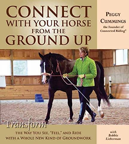 Ride Equitation - Connect With Your Horse from the Ground