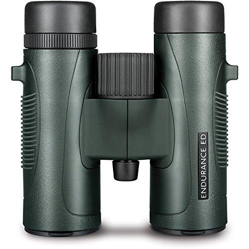 Hawke Endurance ED 8x32 Fernglas, grün, M