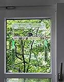 PEDY Großer Fenster Vogelfutterspender, Trans...Vergleich