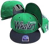 Hartford Whalers Script Two Tone Plastic Snapback Adjustable Plastic Snap Back Hat / Cap