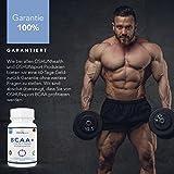 BCAA Tabletten | 1200mg verzweigtkettige Aminosäuren | BCAA+ mit zugesetztem Vitamin B6 als Absorptionhilfe | Leucin, Isoleucin und Valin im optimalen 2 1 1 Nährstoffverhältnis | Aminosäure-Tabletten (nicht Kapseln) | Geeignet für Männer und Frauen | in GB erzeugt und GMP-zertifiziert | OSHUNsport Ernährung | Einführungsangebot nur für begrenzte Zeit - 8