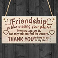 Friendship Sign Best Friend Plaque Gift Shabby Chic Heart & Thank You - READ ME