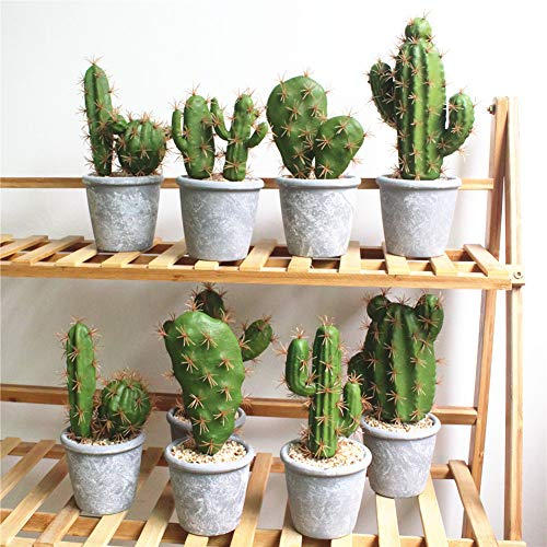 Gracorgzjs cactus finestra tela pittura senza cornice poster ...