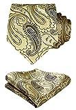 Hisdern Floral Paisley Cravate d...