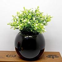 Lx.AZ.Kx Piccolo in ceramica vasi di fiore pacchetto di emulazione minimalista moderno camera da letto Home Bar prima di parti di decorazioni domestiche,Nero Bottiglia di