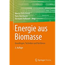 Energie aus Biomasse: Grundlagen, Techniken und Verfahren