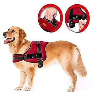 Lifepul(TM) Gilet Chien Harnais réglable sans traction rembourré Ceinture de sécurité confortable pour entraîner/promener les grands chiens – Sans étouffement Sûr Anti-traction