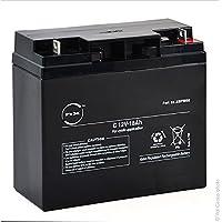 NX - Batería plomo AGM C 12V-18Ah 12V 18Ah G-M6