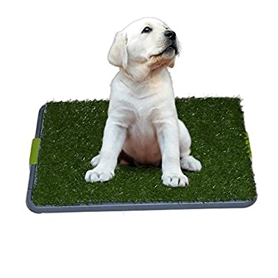 Easy Dog Potty Training - Made with Synthetic Grass - 3 Layered Systems - Great for Dogs Stuck in the House All Day - Indoor Use. A Patch of Synthetic Grass Held By an Elevated Grid System Fits Neatly in the Pan Tray. It's Like a Dog Litter Box or a Dog I