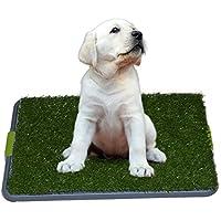 Fácil Dog Potty Training - Made con césped sintético - 3 de Sistemas Capas - grande para perros Atascado en la casa todo el día - para uso en interiores.
