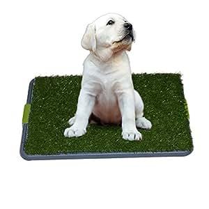 sonnyridge liti re pour chien avec gazon synth tique utilisation int rieur. Black Bedroom Furniture Sets. Home Design Ideas