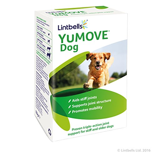 Lintbells YuMOVE Dog supplement ...