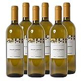 Pinot Grigio DOC Südtirol 2017 Weißwein Italien trocken (6x 0.75 l)