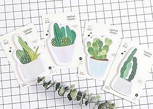 Set de 4 bonitos cactus