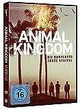 Animal Kingdom Staffel 1 (3 DVDs)