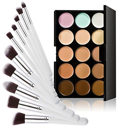 Timesong professionnel 10 pcs Cosmétique Lot de pinceaux de maquillage + 15 couleurs maquillage Correcteur Palette (Blanc et argenté Poignée)