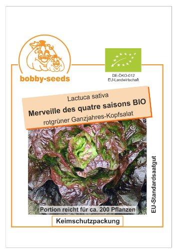 Bobby-Seeds Kopfsalat Salat Merveille des 4 saisons BIO Portion