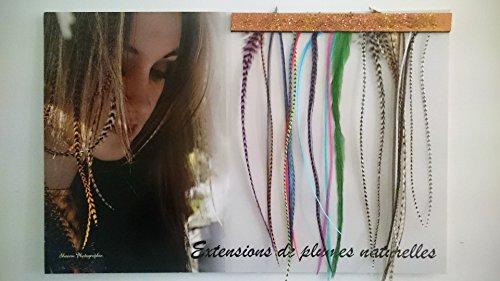 Kit complet pose en salon 20 Extensions et présentoir mural, plumes naturelles Mix couleur et nature XL 20-30 cm 100% naturel pour cheveux + anneaux fixation offerts+ outils