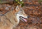 Begegnungen DER WOLF (Wandkalender 2018 DIN A3 quer): Der Wolf - fantastische Bilder vom Isegrim. (Monatskalender, 14 Seiten ) (CALVENDO Tiere) [Kalender] [Apr 16, 2017] GUGIGEI, k.A.