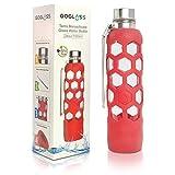 GoGlass Terra Borosilicate Glass Water B...