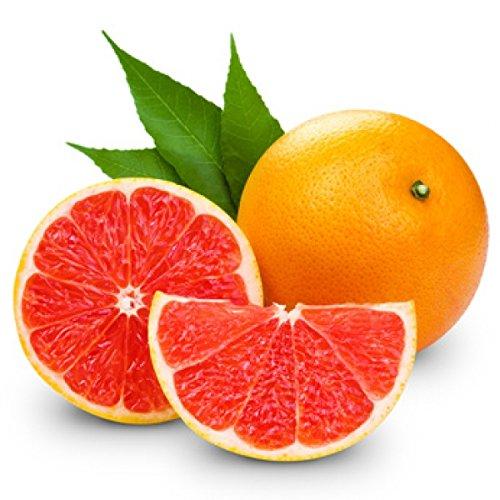 E-Aroma für E-Liquide I Grapefruit I 10 ml I Ohne Nikotin I Aromakonzentrat zum Mischen mit Basen I Herrlan - Made in Germany