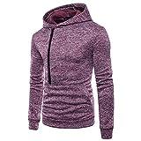 MRULIC Herren Langarm Zipper Hoodie mit Kapuze Sweatshirt Tops Schwer Outwear Bluse RH-034(Violett,EU-52/CN-3XL)