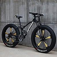 WJH 26 Pouces Mountain Bikes Vêtements Hommes, Haute teneur en Carbone en Acier Hardtail VTT, Vélo de Montagne avec siège réglable, tdoor Riding Shock Absorption 21 Vitesse 24 Vitesse 27 Vitesse
