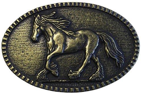 Brazil Lederwaren Gürtelschnalle Pferd 4,0 cm | Buckle Wechselschließe Gürtelschließe Reitaccessoires 40mm Massiv | für Reit-Outfit