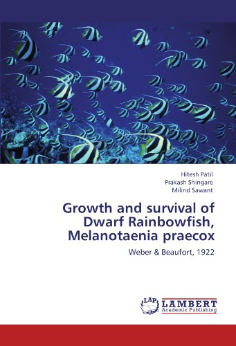 Growth and survival of Dwarf Rainbowfish, Melanotaenia praecox: Weber & Beaufort, 1922