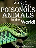 Image de 25 of the Most Poisonous Animals in the World! Incredible Facts, Photo