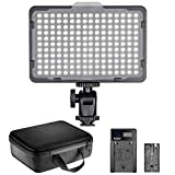 Neewer Kit d'Illuminazione Luce 176 LED: Pannello 176 LED Dimmerabile con Batteria a Litio 2600mAh, Caricabatterie a USB & Custodia, per Foto di Prodotti Ritratti