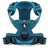 Kismaple Adjustable 3M Refletive Dog Harness, Soft Padded No Pull Outdoor Training/Walking Pet Vest with Handle, Puppy Chest Vest Harness for Small Dogs (S (43-56cm), Blue)