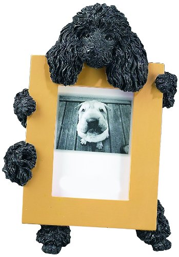 Golden Retriever Picture Frame Holds Your Favorite 2 5 By 3 5 Inch