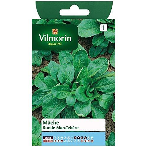Vilmorin - Sachet graines Mâche ronde maraichere