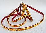 Lusy011 York Fashion = HUNDELEINE(130)+Geschirr (Brustkorb 30-36cm) EKOLeder Gelb/Rot