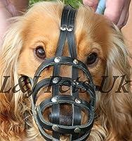Muselière pour chien en cuir clair Continental Jouet Cocker Spaniel papillon & Museau similaires
