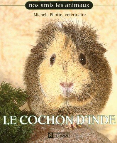 Cochon d Inde par Pilotte Michele