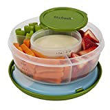 Best Fit & Fresh Freezer Packs - Fit & Fresh Fruit and Veggie Bowl Review