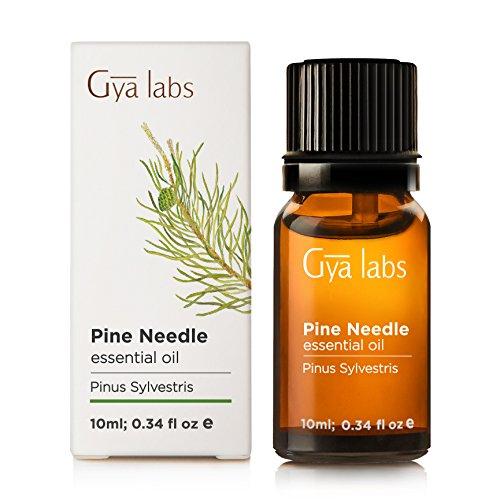 Essentielle d'aiguille de pin Pine Needle 10 ml - 100% pure, non diluée, de qualité naturelle et thérapeutique pour l'aromathérapie, la peau et la relaxation - Gya Labs