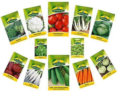 12 variedades | Surtido de semillas de verduras | adecuado para principiantes | mezcla robusta | ahora precio especial de invierno