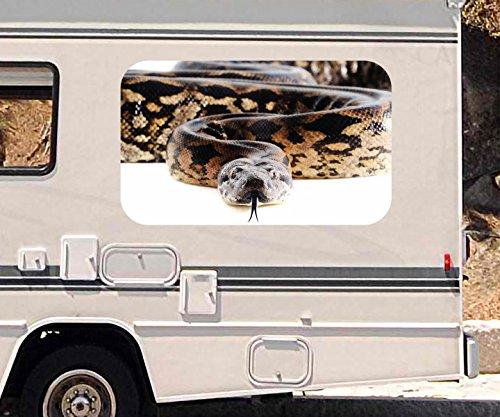 3d-autoaufkleber-python-schlange-reptil-kriechtier-wohnmobil-auto-kfz-fenster-motorhaube-sticker-auf