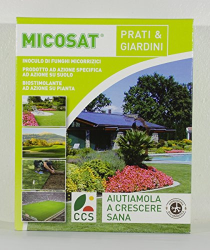 micosat-f-wp-lawns-and-gardens-inoculum-of-mycorrhizal-fungi-in-conf-1-kg