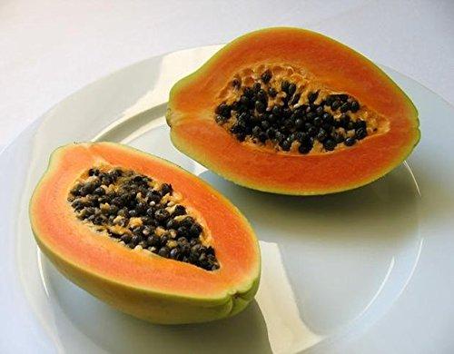papaya-fermentata-teva-30-stick