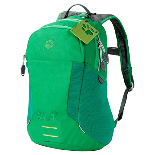 Jack Wolfskin Kinder Kids Moab Jam Outdoor Rucksack, Forest Green, 39x29x5 cm (Big Kinder Bekleidung)